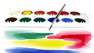 Pittura e Accessori