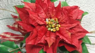 Fiori e Decorazioni per il Natale